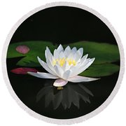 Reflections Of A Water Lily Round Beach Towel