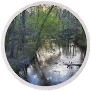 Round Beach Towel featuring the photograph Reflections On The Congaree Creek by Skip Willits