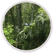 Reflections Upon The Swamp Round Beach Towel