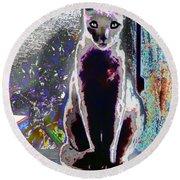 Regal Puss Round Beach Towel by Expressionistart studio Priscilla Batzell