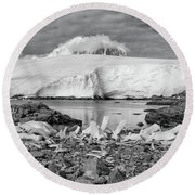 Round Beach Towel featuring the photograph Remains Of A Giant by Alan Toepfer