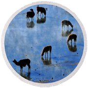 Round Beach Towel featuring the photograph Rendezvous by Skip Hunt