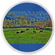 Rescue Horses Round Beach Towel