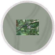 Chubby Round Beach Towel by Barbara S Nickerson