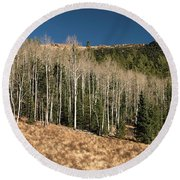 Round Beach Towel featuring the photograph Resting Aspens by Kristia Adams