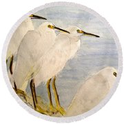 Resting Egrets Round Beach Towel