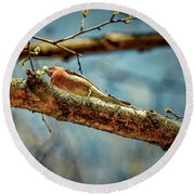 Resting #g3 Round Beach Towel by Leif Sohlman