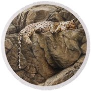 Round Beach Towel featuring the painting Resting In Comfort by Alan M Hunt