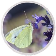 Round Beach Towel featuring the photograph Resting In The Purple by Kerri Farley