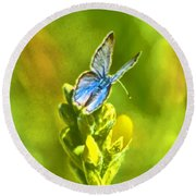 Resting On A Flower Round Beach Towel by Steven Parker