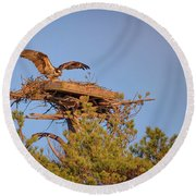 Round Beach Towel featuring the photograph Returning To The Nest by Rick Berk