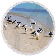 Rhapsody In Seabird Round Beach Towel