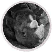 Rhino Nap Round Beach Towel