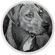 Round Beach Towel featuring the drawing Rhodesian Ridgeback by Terri Mills