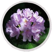 Rhododendron 2 Summer 2017 Round Beach Towel
