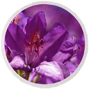 Round Beach Towel featuring the photograph Rhododendron  by Baggieoldboy