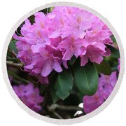 Rhododendron Beauty Round Beach Towel