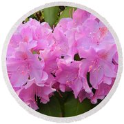 Rhododendron Beauty1 Round Beach Towel