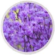 Round Beach Towel featuring the photograph Rhododendron In Bloom. Spring Watercolors by Jenny Rainbow