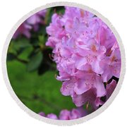 Round Beach Towel featuring the photograph Rhododendron by Rick Morgan