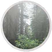 Rhododendrons In The Fog Round Beach Towel