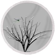 Round Beach Towel featuring the photograph Ribbon Grass by Asok Mukhopadhyay