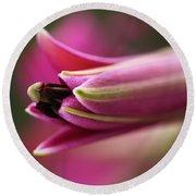 Rich Pink Lily Bud Round Beach Towel by Joy Watson