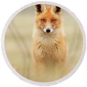 Right Into Your Soul - Red Fox Round Beach Towel