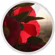 Right Turn On Red Round Beach Towel