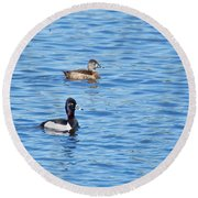 Ring-neck Ducks Round Beach Towel by Michael Peychich