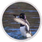 Ring-necked Duck Wings Up Round Beach Towel