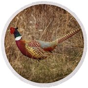 Ring Necked Pheasant Round Beach Towel