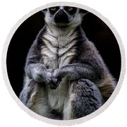 Round Beach Towel featuring the photograph Ring Tailed Lemur by Chris Lord