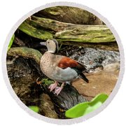 Ringed Teal Round Beach Towel