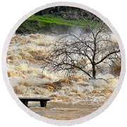 Round Beach Towel featuring the photograph Ringside Seat by AJ Schibig