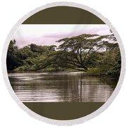 Riparian Rainforest Canopy Round Beach Towel