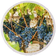 Ripe Grapes On Vine Round Beach Towel