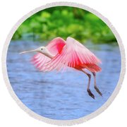 Rise Of The Spoonbill Round Beach Towel