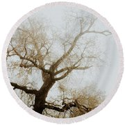 Round Beach Towel featuring the photograph Rising by Iris Greenwell