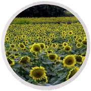 River Of Sunflowers Round Beach Towel by Barbara Bowen