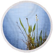 Round Beach Towel featuring the photograph Riverbank Beauty by Carolyn Marshall