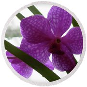 Round Beach Towel featuring the photograph Riverfront Gallery Orchid by Randy Rosenberger
