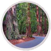 Road Through Redwood Grove Round Beach Towel