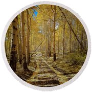 Round Beach Towel featuring the photograph Road To Gold In Colorado by Steven Reed
