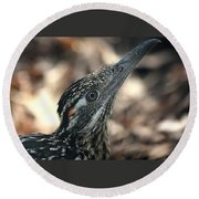 Roadrunner Close-up Round Beach Towel by Sheila Brown