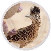 Round Beach Towel featuring the photograph Roadrunner by Dan McManus