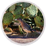 Roadrunner Round Beach Towel by Kathryn Meyer