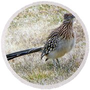 Roadrunner New Mexico Round Beach Towel