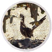 Roadrunners Shade-time Round Beach Towel