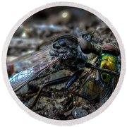 Robber Fly Eating Green Bottle Fly Round Beach Towel